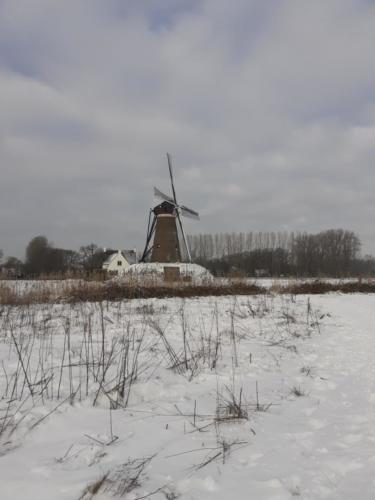 roosdonck-winter 06