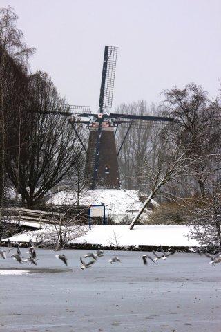roosdonck-winter-09